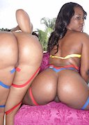 Two big black butts